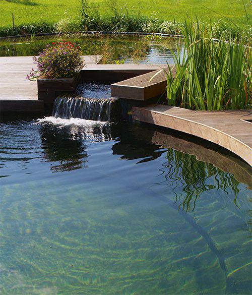 welke zwemvijver kiezen zwembadenplus