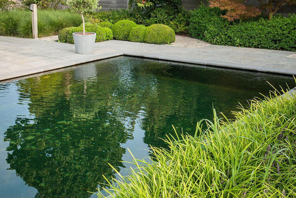 Realisatie van cools bvba fraaie keermuur zwembadenplus