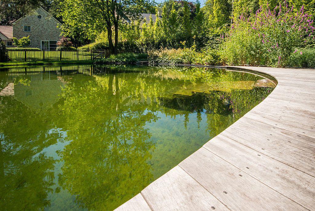 Zwembad van cools bvba natuurlijk watereffect for Zwemvijver afmetingen