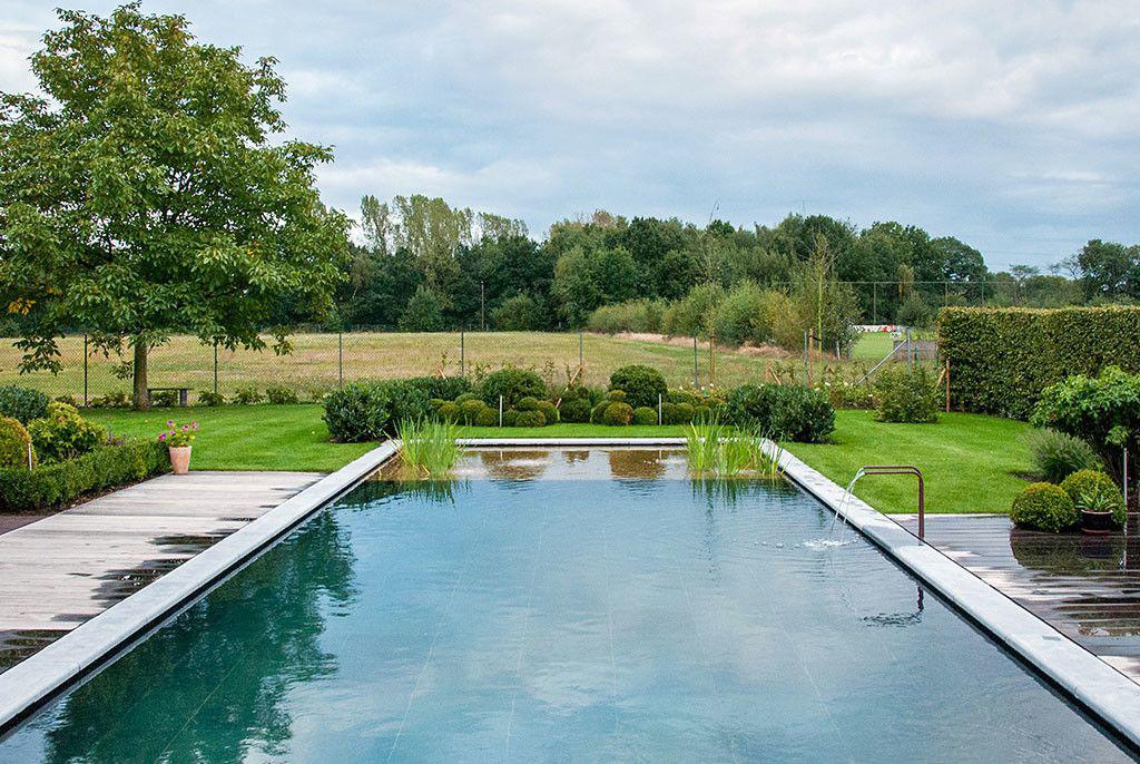 Zwembad van 39 t groene plan grandeur zwembadenplus for Zwemvijver afmetingen