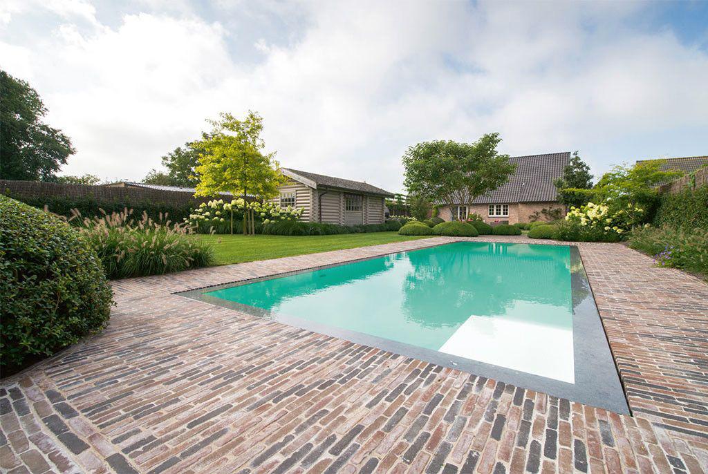 Zwembad van biopool ruimte voor zonneterras zwembadenplus for Zwembad voor in de tuin met pomp