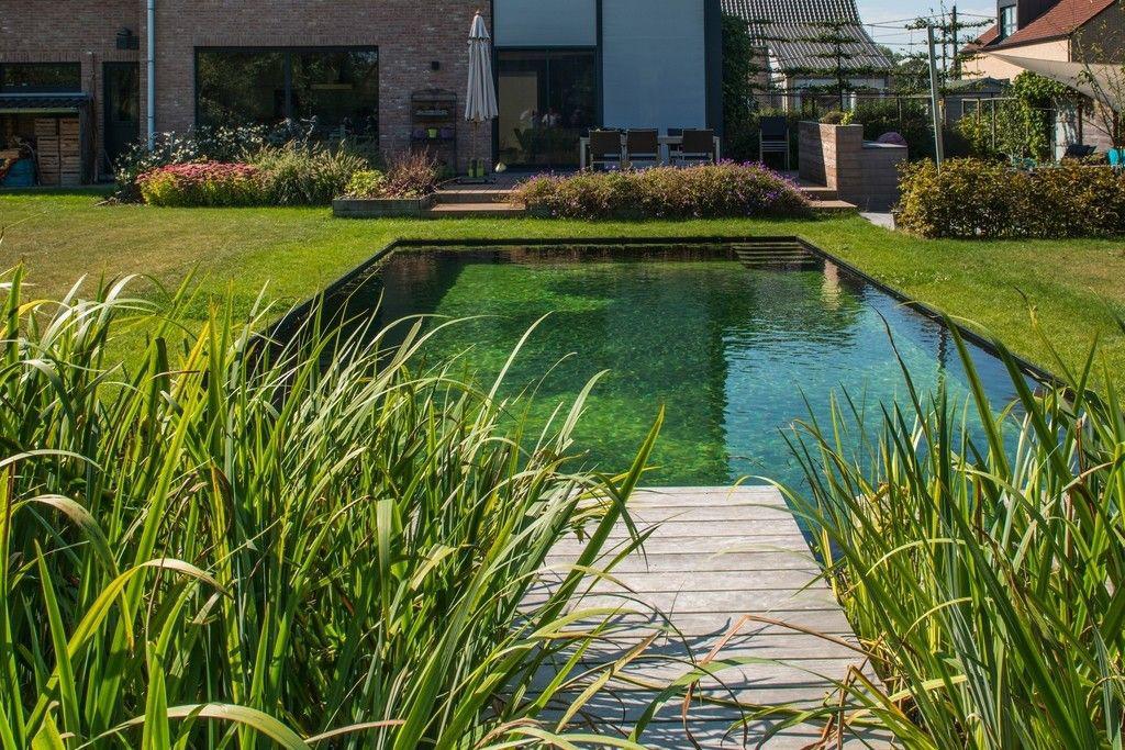 zwembad van tuinen joos bvba een zwarte vlek in een