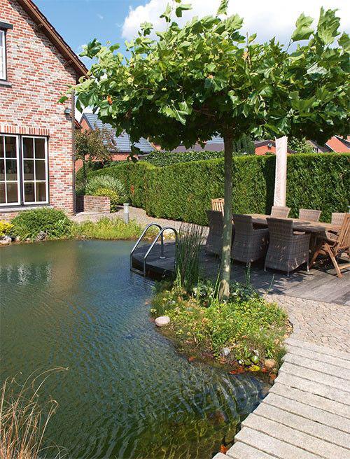 Welke zwemvijver kiezen zwembadenplus for Natuurvijver aanleggen
